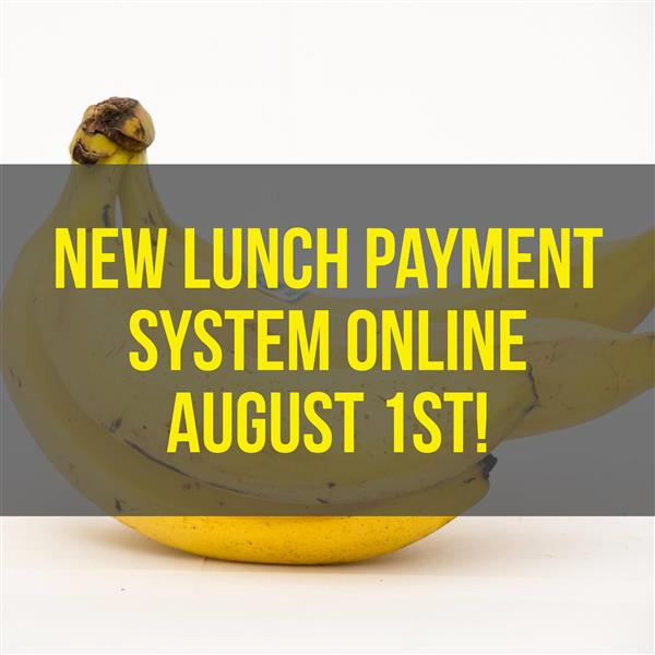 New online payments system ready August 1st!