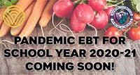 Pandemic EBT for 2020-21 school year coming soon!