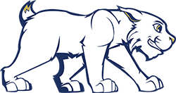 Woodland Wildcats logo