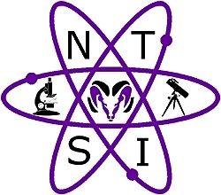 NTSI logo